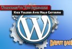 wordpress yazı tipi